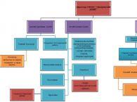 Подробнее: Структура учреждения